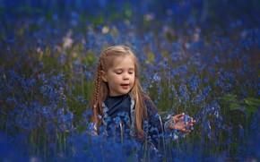 Картинка цветы, луг, девочка, колокольчики, косичка, боке