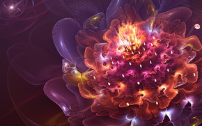 Картинка яркие краски, фракталы, красота, beauty, fractals, bright colors, fire flower, огненный цветок, flashes of light, …