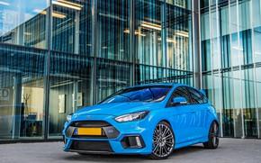 Картинка Ford, Focus, Blue