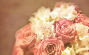 Картинка свет, фон, розы, букет