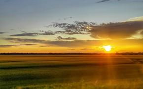 Картинка поле, небо, облака, закат, Движение