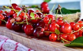 Картинка листья, вишня, ягоды, смородина