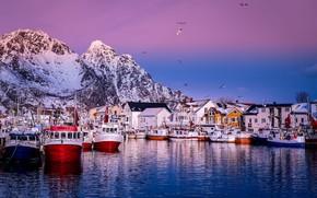 Картинка море, пейзаж, горы, птицы, скалы, побережье, пристань, дома, корабли, лодки, утро, причал, деревня, Норвегия, Лофотенские …