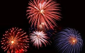 Картинка light, night, fireworks