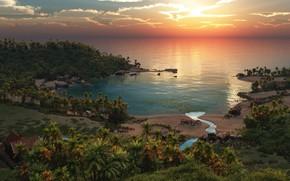 Картинка ручей, пальмы, берег, лагуна, Fisherman's paradise