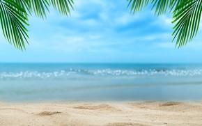 Обои песок, море, пляж, лето, небо, солнце, пальмы, берег, summer, beach, sea, seascape, beautiful, sand, paradise, ...