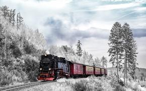 Картинка зима, лес, небо, рельсы, паровоз, железная дорога