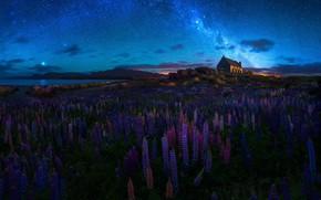 Обои поле, небо, звезды, облака, цветы, ночь, дом, темнота, синева, луна, берег, холм, луг, домик, млечный ...