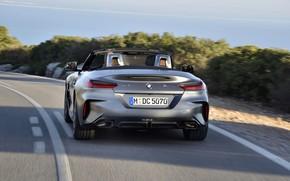 Картинка серый, разметка, BMW, родстер, корма, BMW Z4, M40i, Z4, 2019, G29