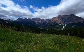 Картинка лес, лето, трава, облака, горы, синева, склоны, вид, луг