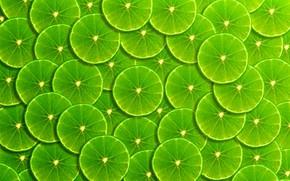 Обои фон, green, лайм, фрукты, ломтики, background, fruit, lime, frangipani, slice