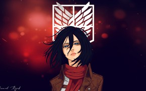Картинка взгляд, девушка, Mikasa Ackerman, Атака Титанов, Attack On Titan, Shingeki No Kyojin, Микаса Аккерман