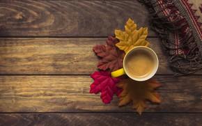 Обои осень, листья, фон, дерево, кофе, colorful, шарф, чашка, доска, wood, background, autumn, leaves, cup, coffee, ...