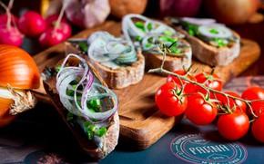Картинка лук, хлеб, помидоры, брускетта, тюлька
