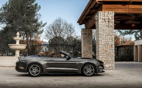 Картинка Ford, стоянка, профиль, кабриолет, 2018, тёмно-серый, Mustang GT 5.0 Convertible