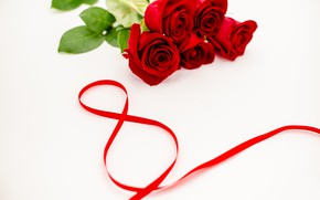 Картинка цветы, розы, лента, красные, red, 8 марта, flowers, romantic, roses