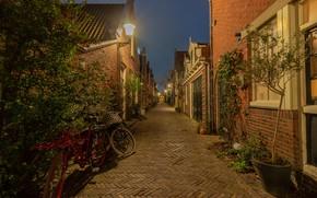 Картинка Голландия, Алкмар, огни, улица, Нидерланды, вечер