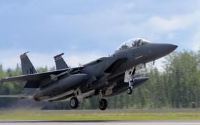 Картинка Истребитель, USAF, F-15E Strike Eagle