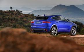 Картинка Jaguar, вид сзади, 2018, кроссовер, P300, Dynamic, E-Pace, AWD R