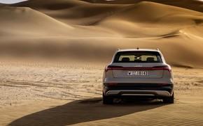 Картинка Audi, вид сзади, кроссовер, E-Tron, 2019, электрокроссовер