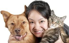 Картинка кошка, животные, девушка, лицо, улыбка, портрет, собака, брюнетка, белый фон, азиатка, морды