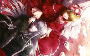 Картинка корона, красное платье, лепестки роз, марионетка, visual novel, will o`wisp, ignis, hanna ellington, длинные белые …