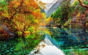 Картинка China, Китай, отражение в воде, осенний парк