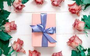 Картинка подарок, розы, бутоны, композиция