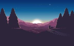 Картинка дорога, лес, небо, солнце, звезды, елки, лис