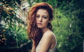 Картинка girl, long hair, photo, photographer, blue eyes, model, bokeh, lips, face, redhead, pose, plants, white …