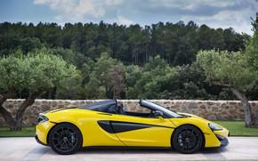 Картинка McLaren, Spider, 570S
