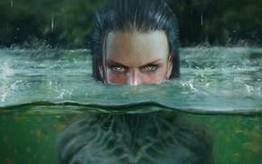 Обои глаза, капли, Вода, существо, вгляд, обман