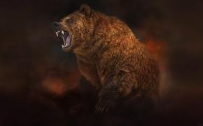 Картинка Стиль, Медведь, Зверь, Арт, Art, Бурый, Style, Beast, Illustration, Brown, Животное, Bear, Animal, Иллюстрация, Рык, …