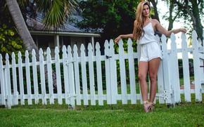 Картинка девушка, поза, забор