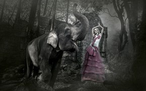 Обои девушка, фон, слон