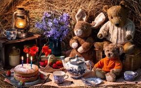 Картинка игрушки, лампа, маки, клубника, сено, торт, мишки, цикорий, тэдди