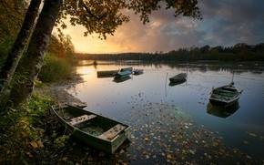 Картинка осень, берег, лодки, водоем