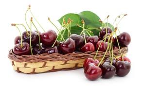 Картинка стол, корзинка, вишни, спелые