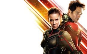 Обои фантастика, белый фон, Evangeline Lilly, постер, персонажи, комикс, костюмы, супергерои, Эванджелин Лилли, MARVEL, Wasp, Paul ...