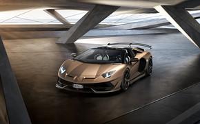 Картинка машина, свет, фары, Lamborghini, спойлер, спорткар, диски, roadster, Aventador, SVJ
