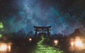 Картинка небо, ночь, природа, тории
