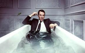 Обои стены, ящерица, костюм, галстук, ванна, сериал, рубашка, пиджак, сидит, драма, в воде, Бенедикт Камбербэтч, Benedict ...