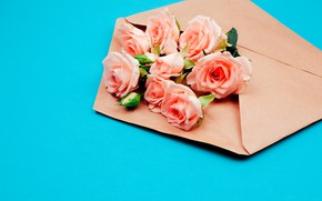 Картинка цветы, розы, конверт
