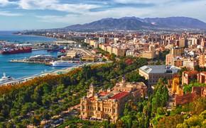 Картинка море, горы, пальмы, дома, корабли, порт, панорама, Испания, Малага