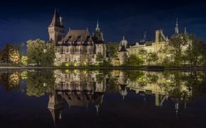 Картинка ночь, Вайдахуняд, Замок, фото, Будапешт