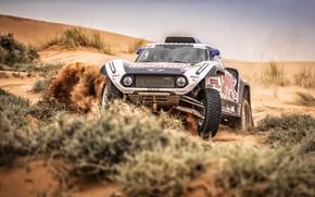 Картинка Песок, Авто, Mini, Спорт, Пустыня, Машина, Автомобиль, 307, Rally, Ралли, Buggy, Багги, X-Raid Team, MINI …