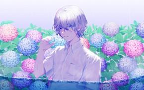 Картинка капли, мокрый, дождь, парень, кудри, в воде, гортензия, белая рубашка, сиреневые волосы