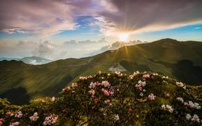 Картинка небо, солнце, облака, лучи, свет, пейзаж, цветы, горы, природа, блики, рассвет, холмы, голубое, листва, склоны, …