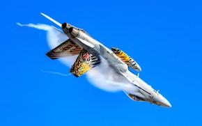 Картинка Истребитель, ВВС Швейцарии, Эффект Прандтля — Глоерта, F/A-18 Hornet, ПТБ