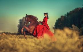 Картинка поле, небо, девушка, лошадь, платье, брюнетка, Анюта Онтикова